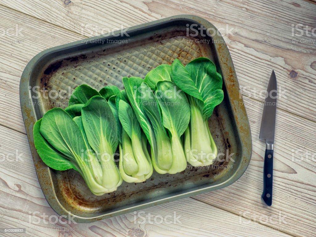Freshness bok choy stock photo