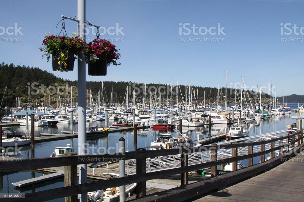 Friday Harbor And Its Boat Haven stock photo
