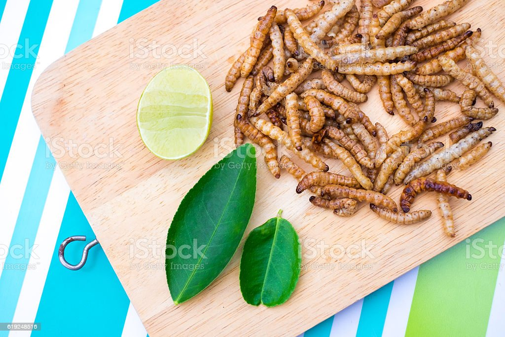 Fried bamboo Caterpillar stock photo