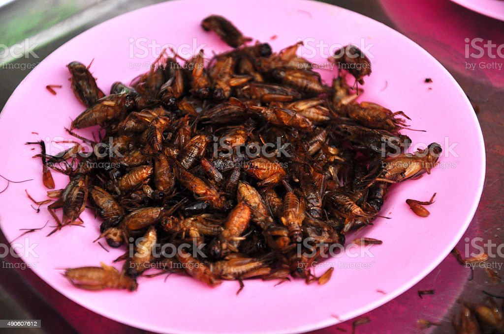 fried bugs for dessert locust cockroach insects  in open market stock photo