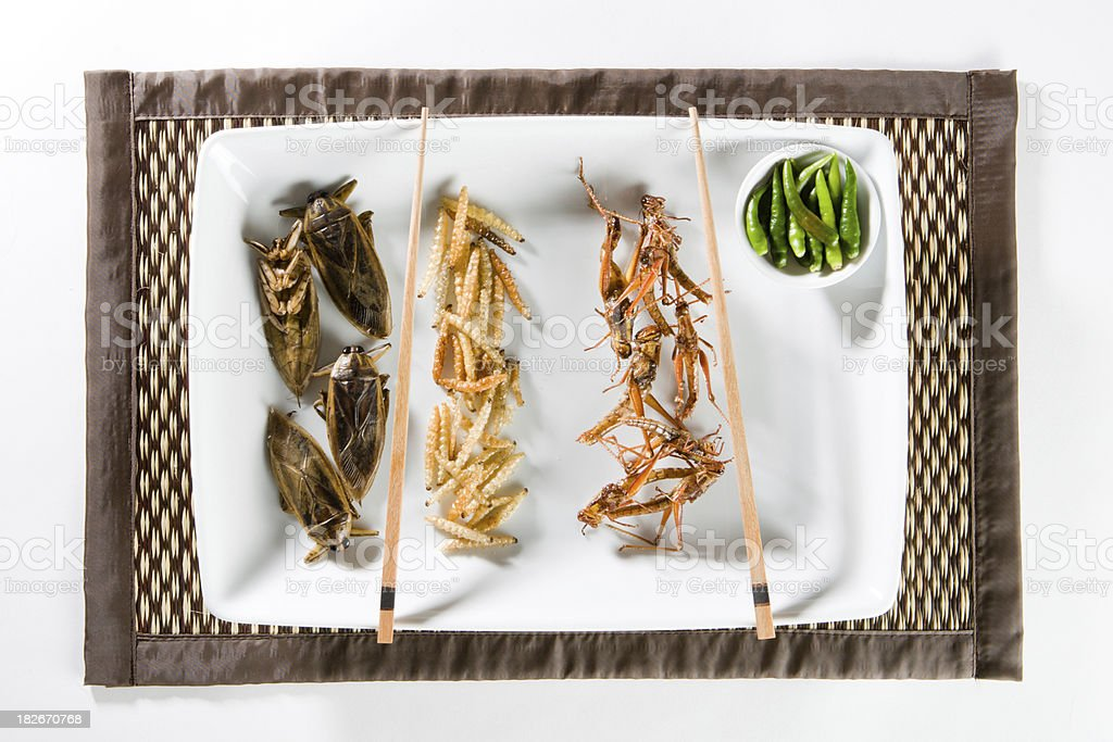 Fried Bugs royalty-free stock photo