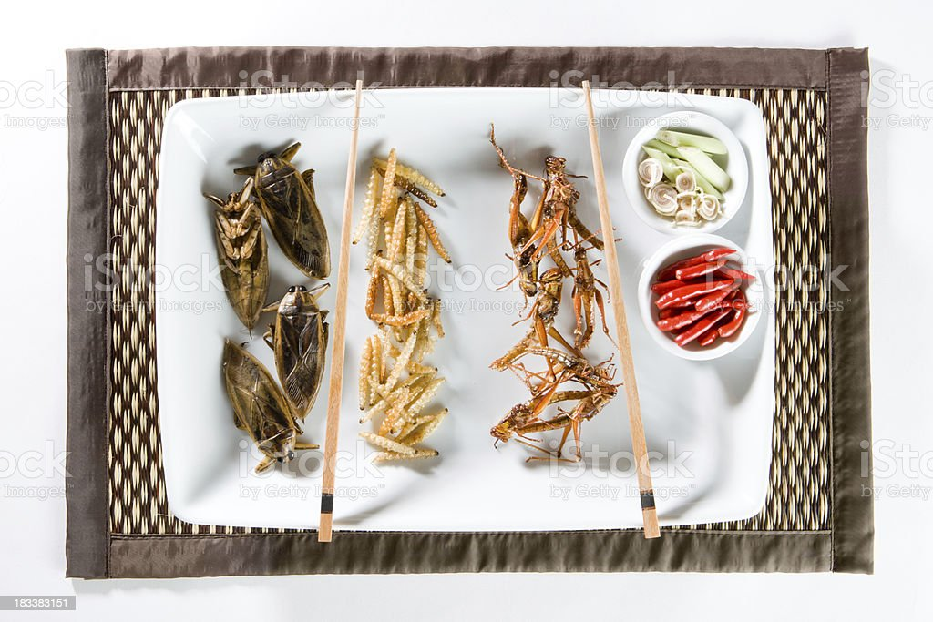 Fried Bugs stock photo
