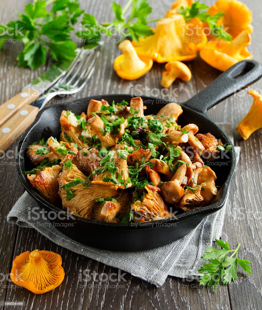Fried chanterelle mushrooms in a creamy sauce stock photo