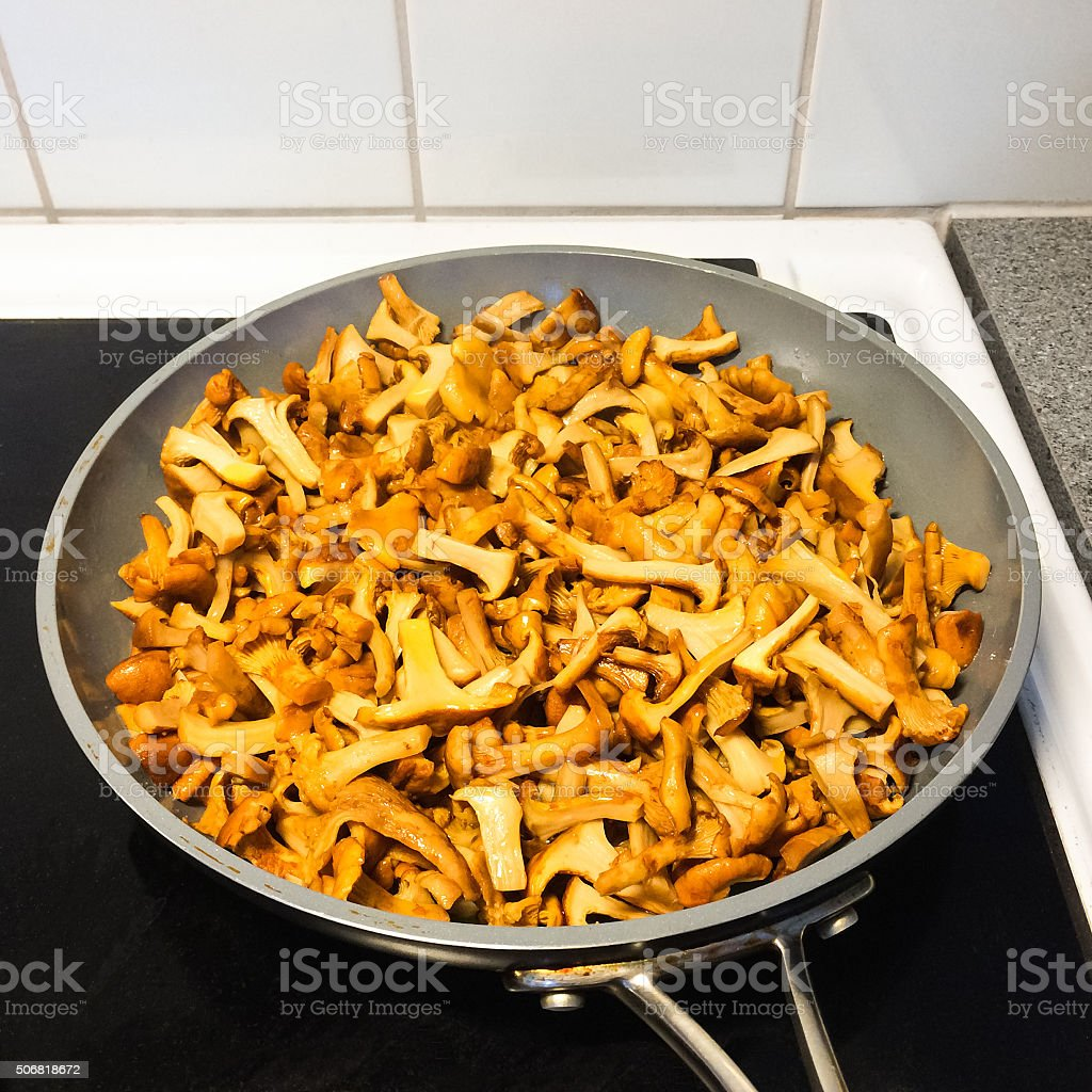 Fried chanterelle mushrooms stock photo