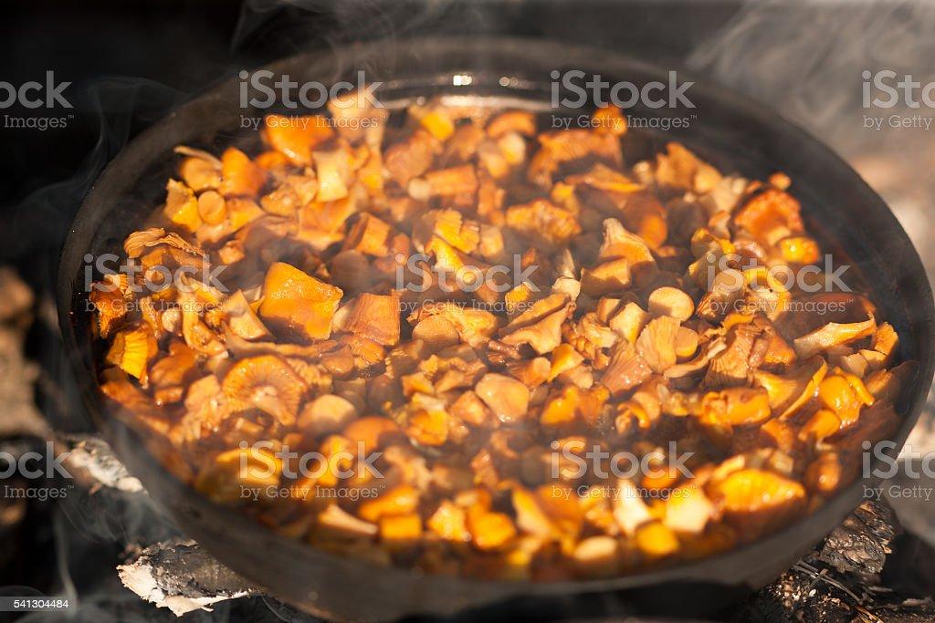 fried chanterelles stock photo