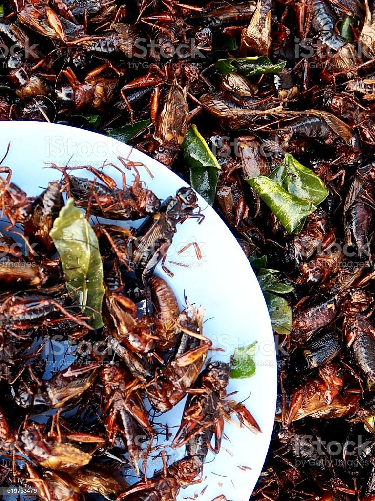 Fried crickets with salty fried Kaffir lime leaves stock photo