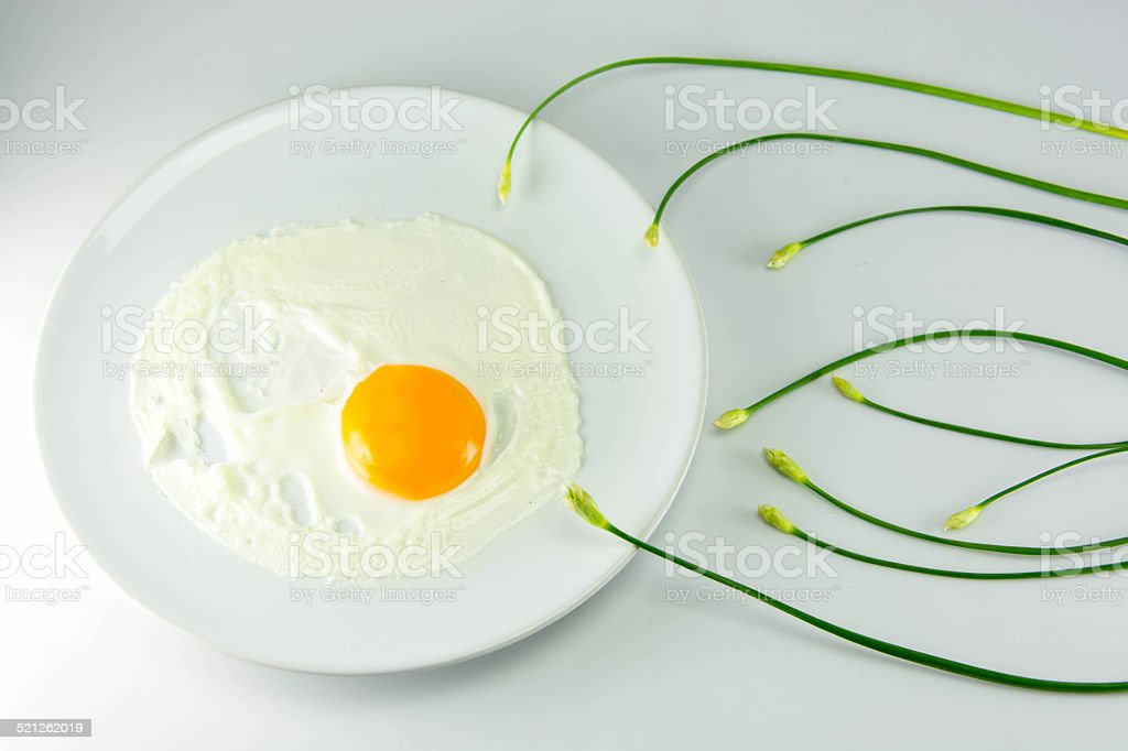 Fried egg with chinese chives on white background stock photo