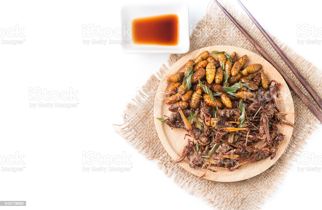 fried grasshoppers and Silkworm pupa stock photo