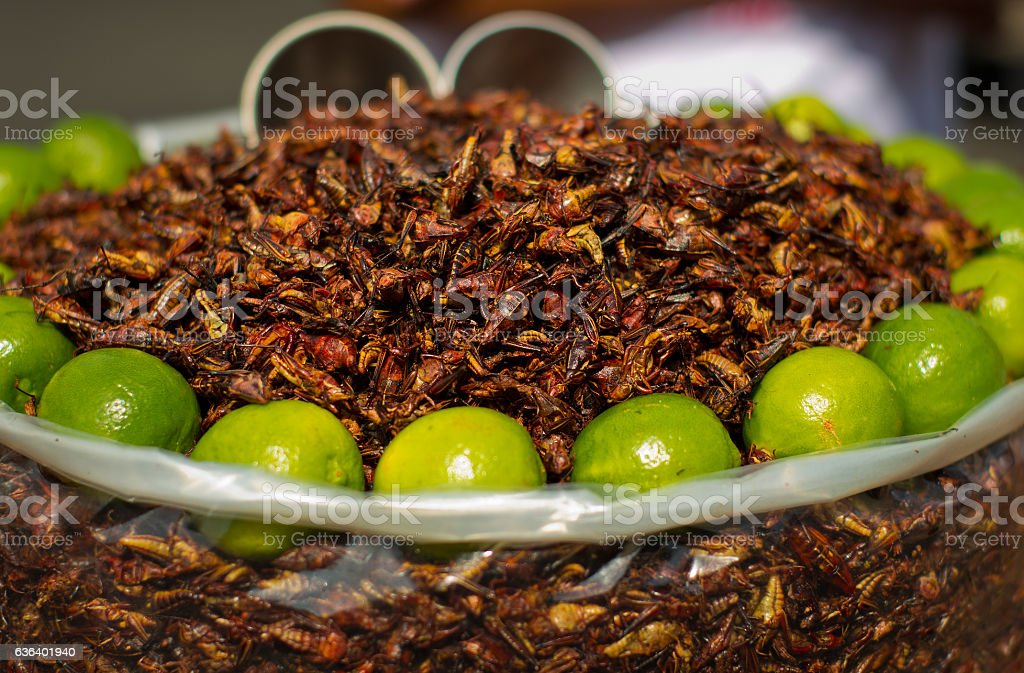 Fried grasshoppers (chapolenas) at a market, Mexico stock photo