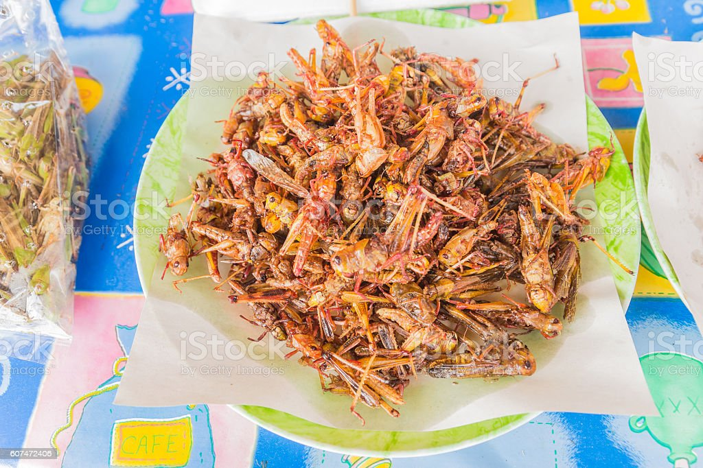 Fried grasshoppers for sale at local Thai market stock photo