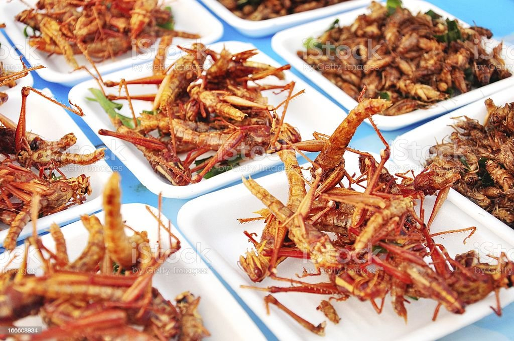 Fried grasshoppers in Thailand market royalty-free stock photo