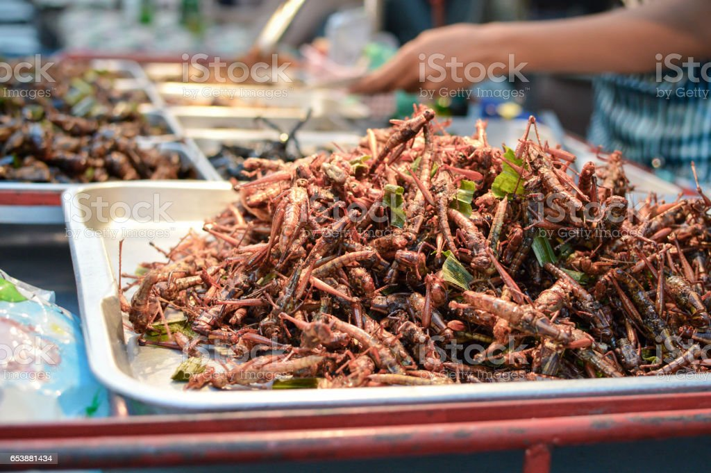 Fried insects sold in the streets of Bangkok, Thailand stock photo