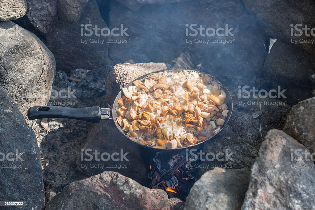 Fried mushrooms in a pan stock photo