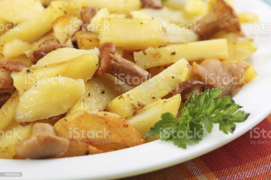 Fried potatoes with chanterelles close-up royalty-free stock photo