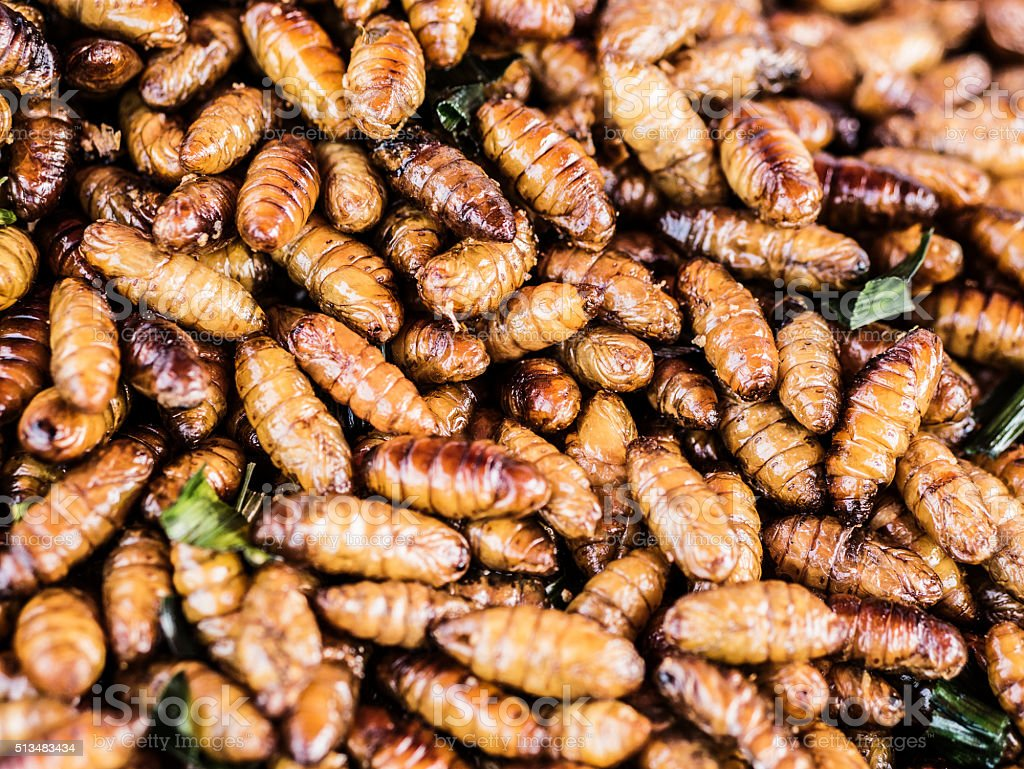 Fried silk worms Bangkok Thailand stock photo