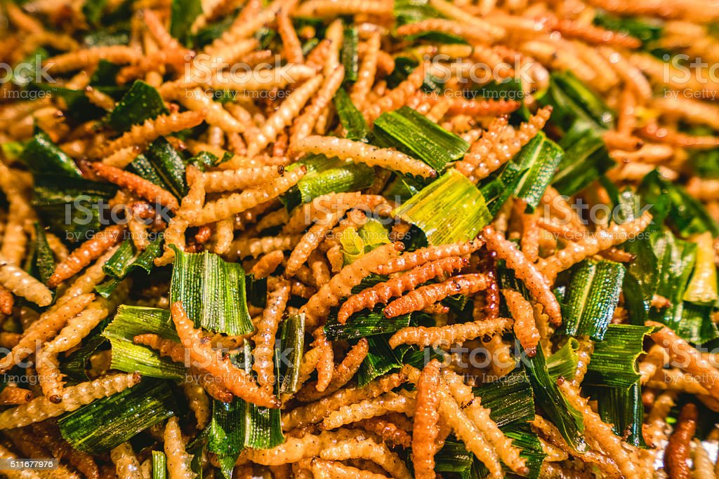 Fried silk worms from Bangkok, Thailand stock photo