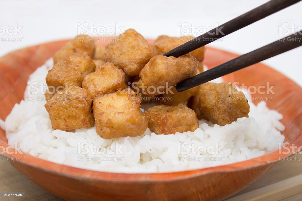 Fried Tofu and Rice stock photo