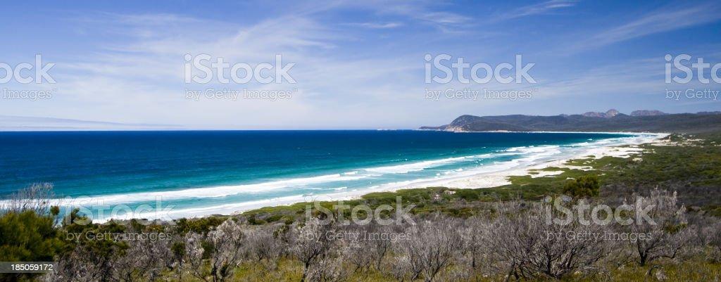 Friendly Beach royalty-free stock photo