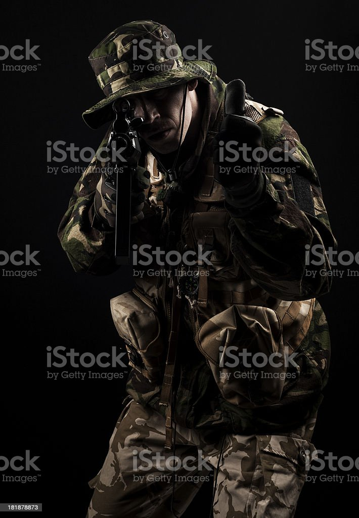 Friendly forces royalty-free stock photo