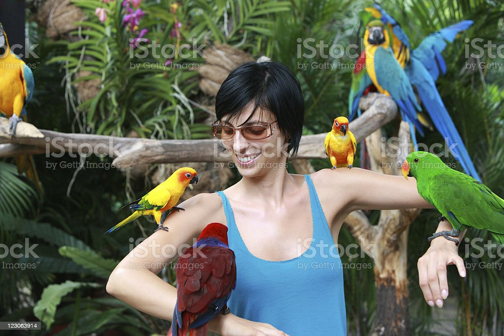 Friendly parrots royalty-free stock photo