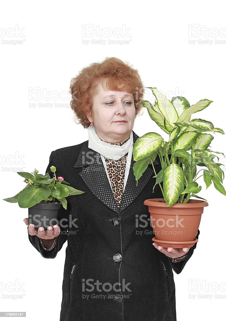 Friendly senior woman with house plant, flowers. royalty-free stock photo