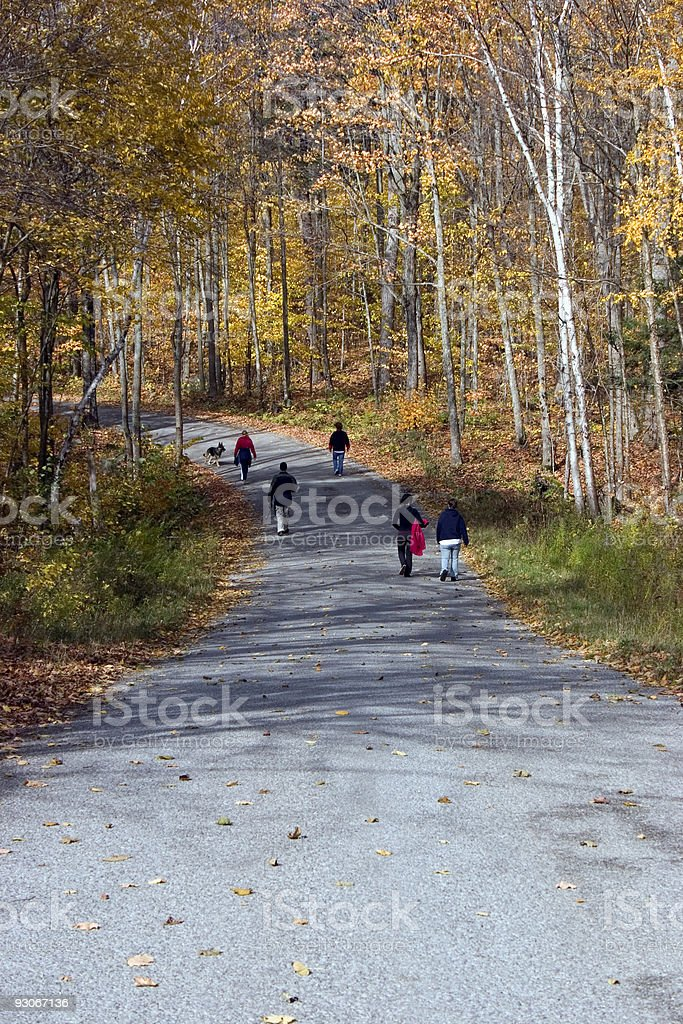 Friends and Family Walking Together stock photo