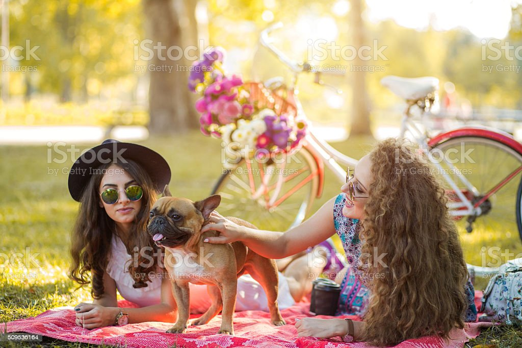 Friends and sweet little dog stock photo