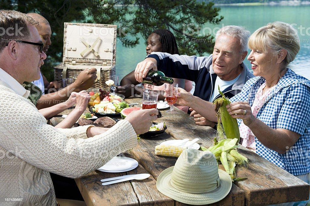 Friends At Picnic royalty-free stock photo