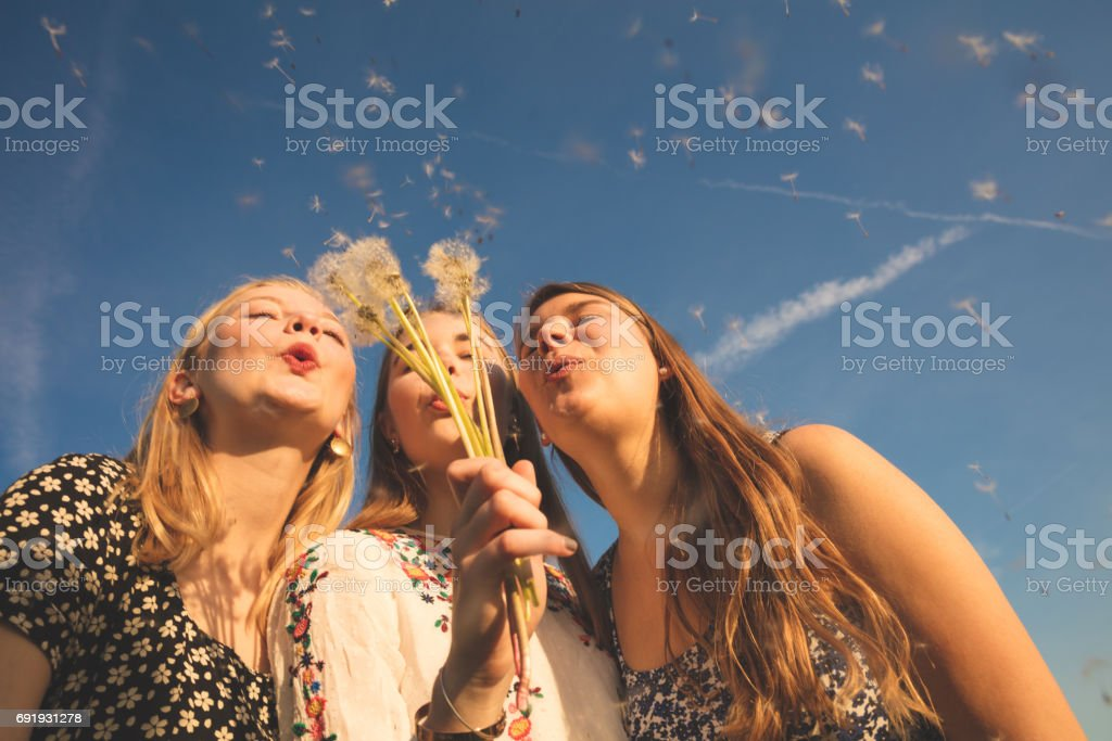 friends blowing dandelion seeds against blue sky stock photo