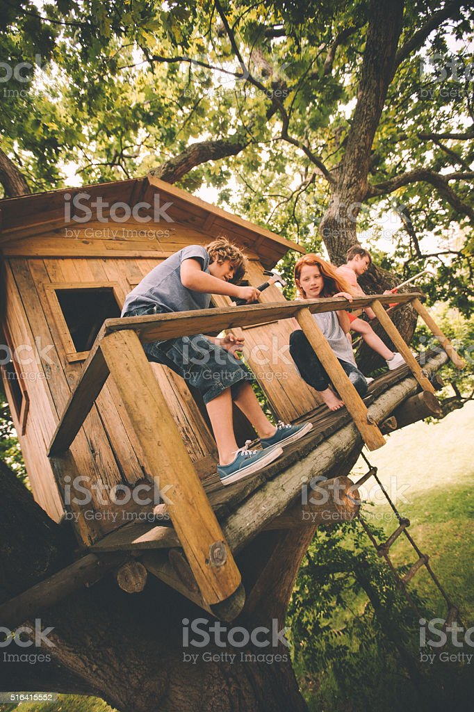 Friends building a treehouse together on a summer day stock photo