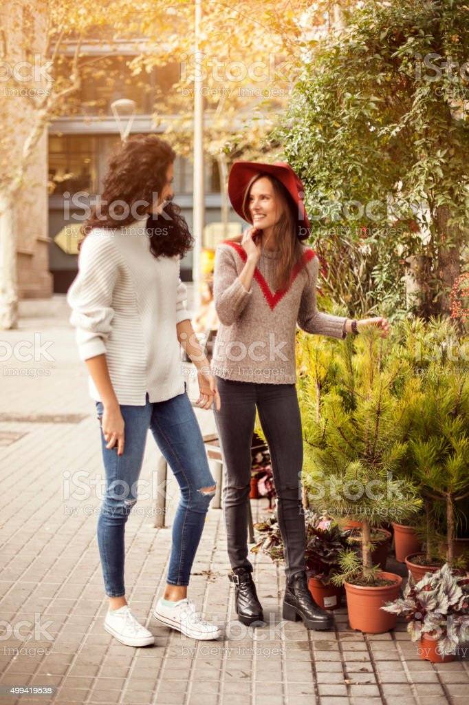 Friends buying a tree stock photo
