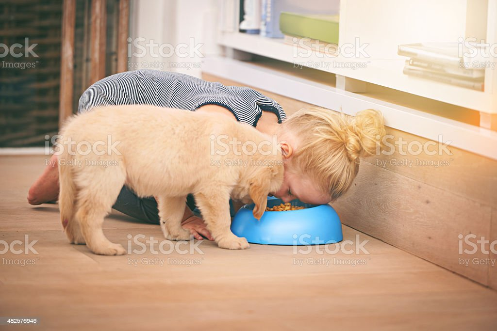 Friends forever...you eat, I eat stock photo