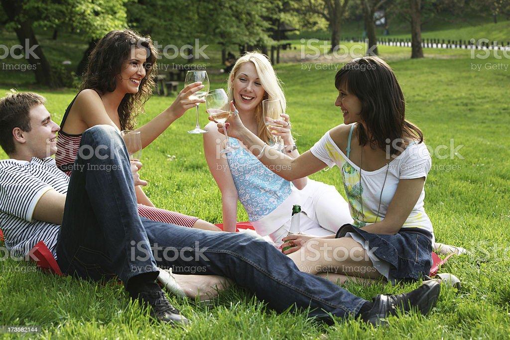 Friends having a toast royalty-free stock photo
