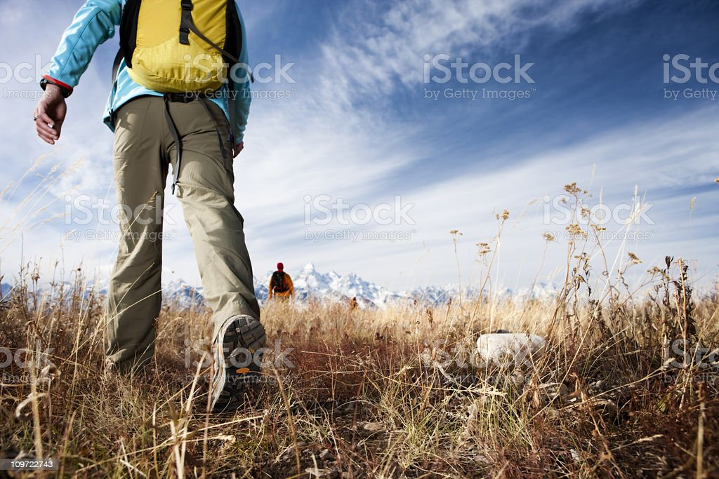 Friends Hiking in Wilderness royalty-free stock photo
