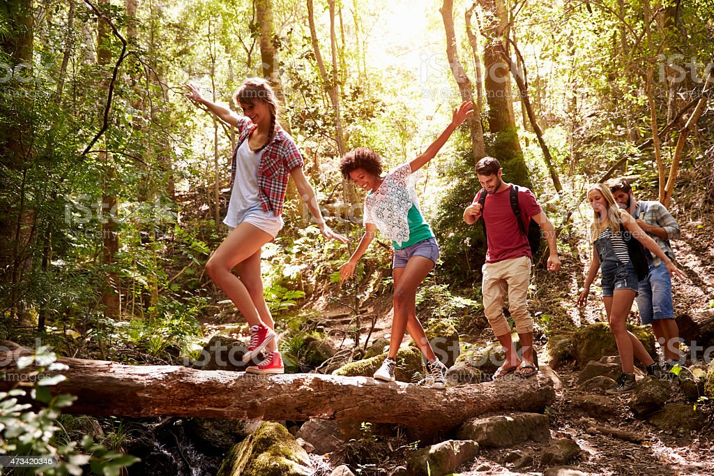 Friends in a forest having fun balancing on a tree trunk stock photo