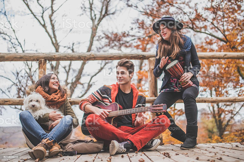 Friends playing musical instruments stock photo