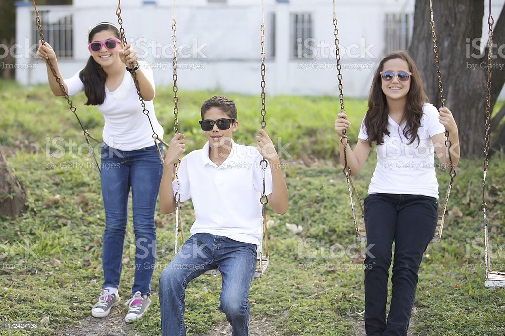 Friends playing on a swing royalty-free stock photo