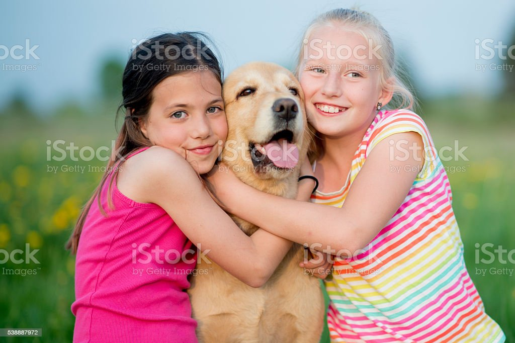 Friends Playing with a Golden Retriever stock photo