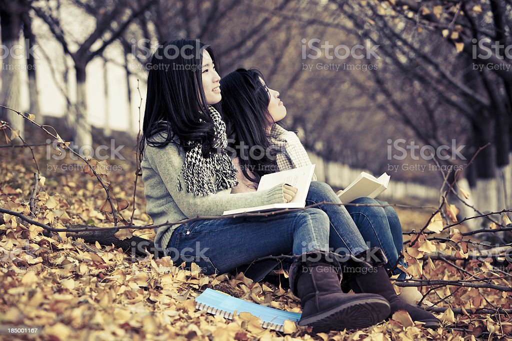 Friends  reading book outdoor royalty-free stock photo