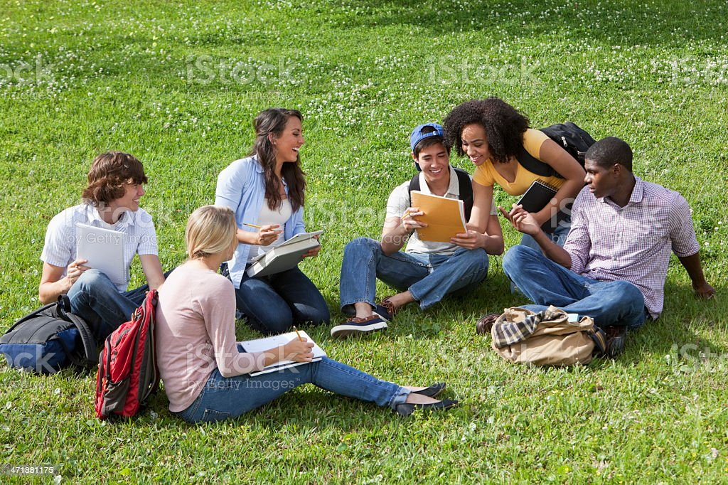 Friends studying on grass royalty-free stock photo