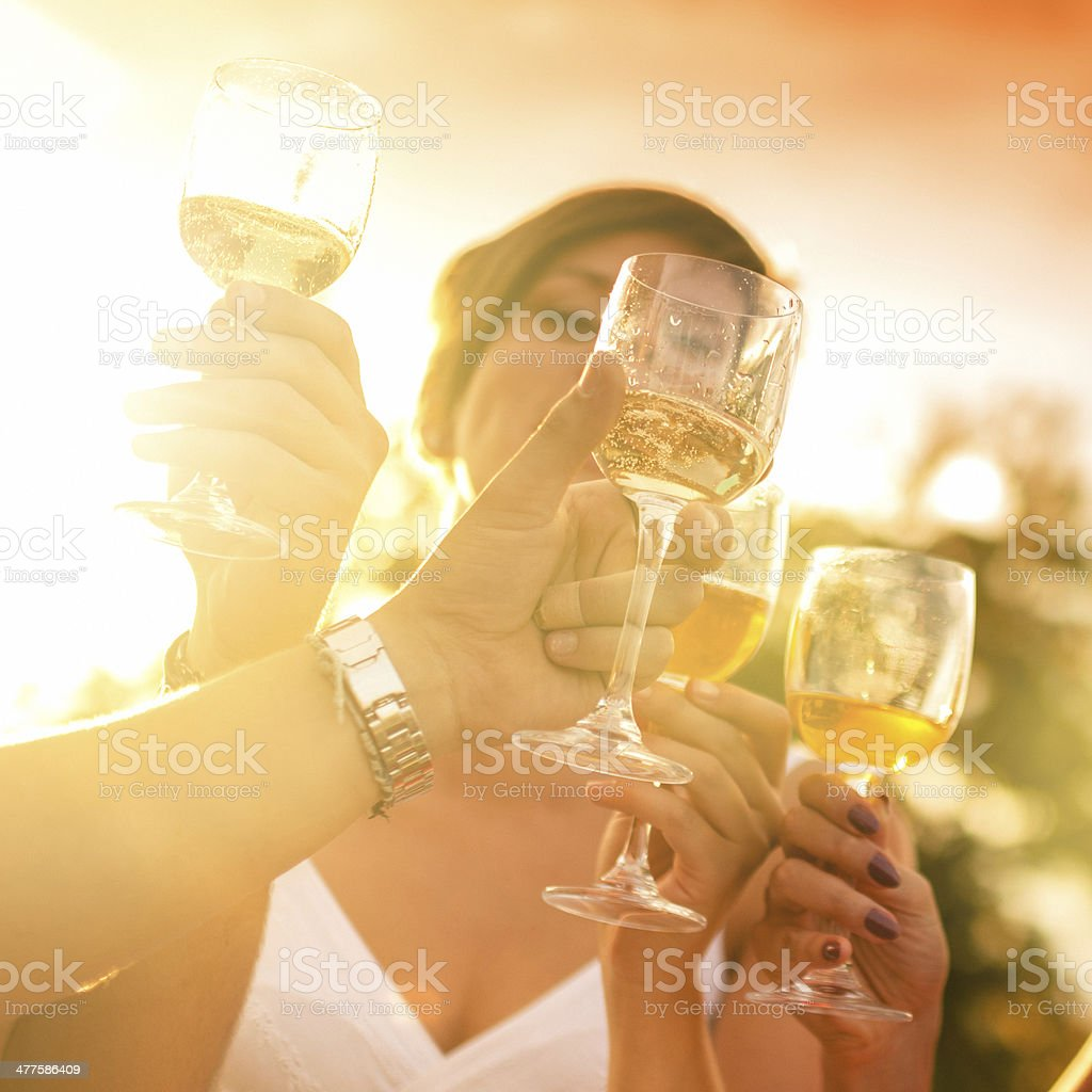 Friends toasting at party for the happy hour stock photo