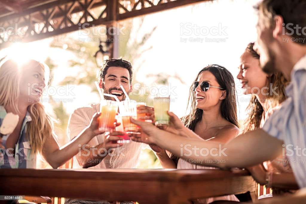 Friends toasting in a bar. stock photo