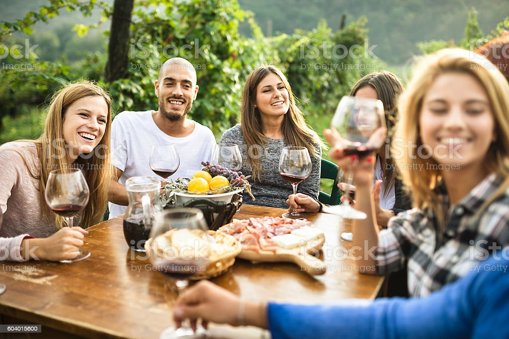 friends toasting with red wine after the harvesting stock photo