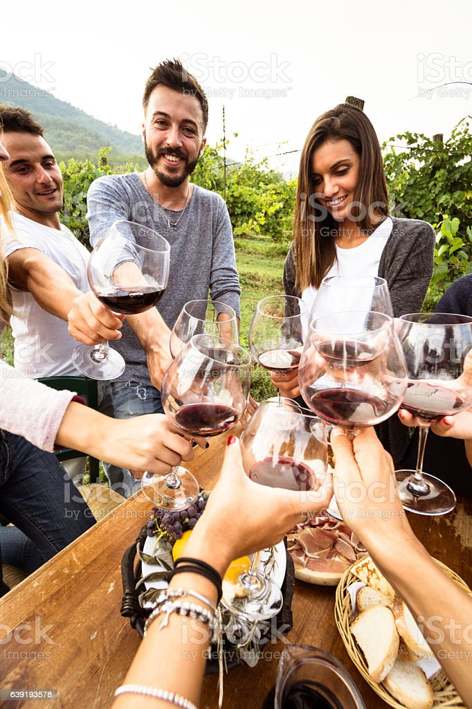 friends toasting with red wine on the lunch stock photo