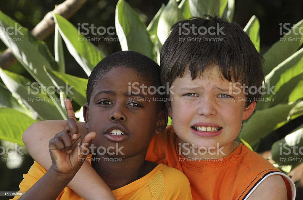 Friends two royalty-free stock photo