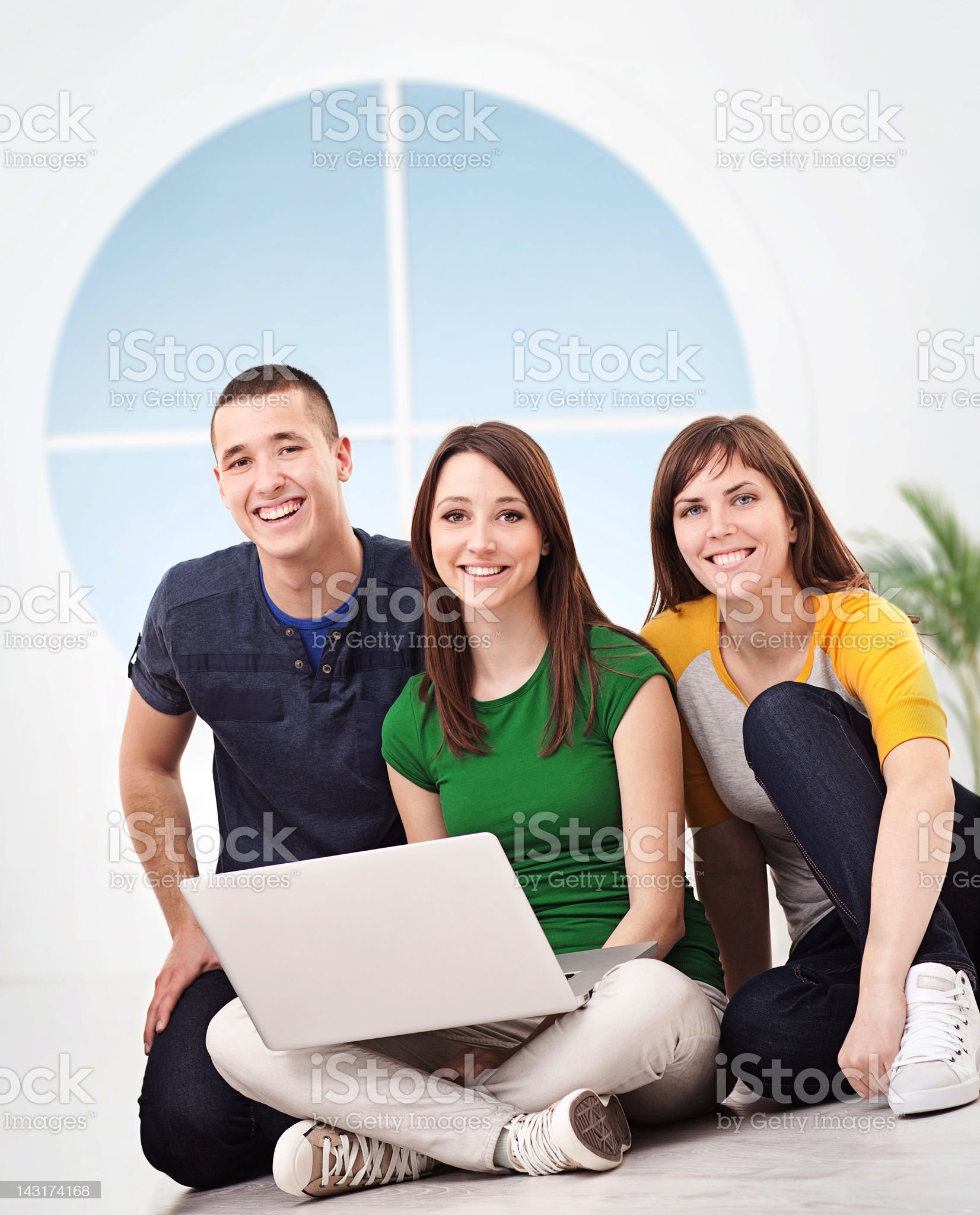 Friends Using Computer royalty-free stock photo