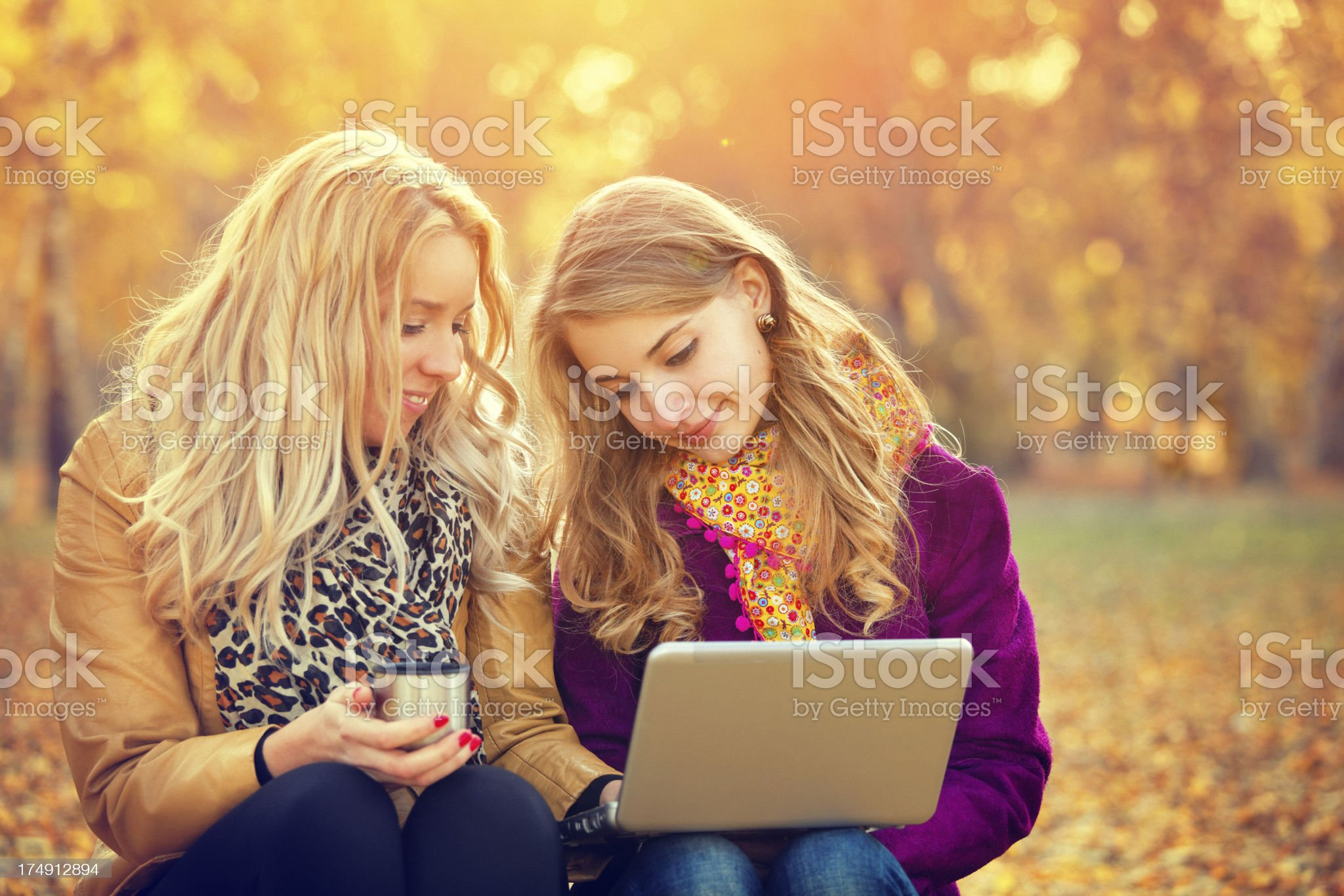 friends using laptop in the autumn park royalty-free stock photo