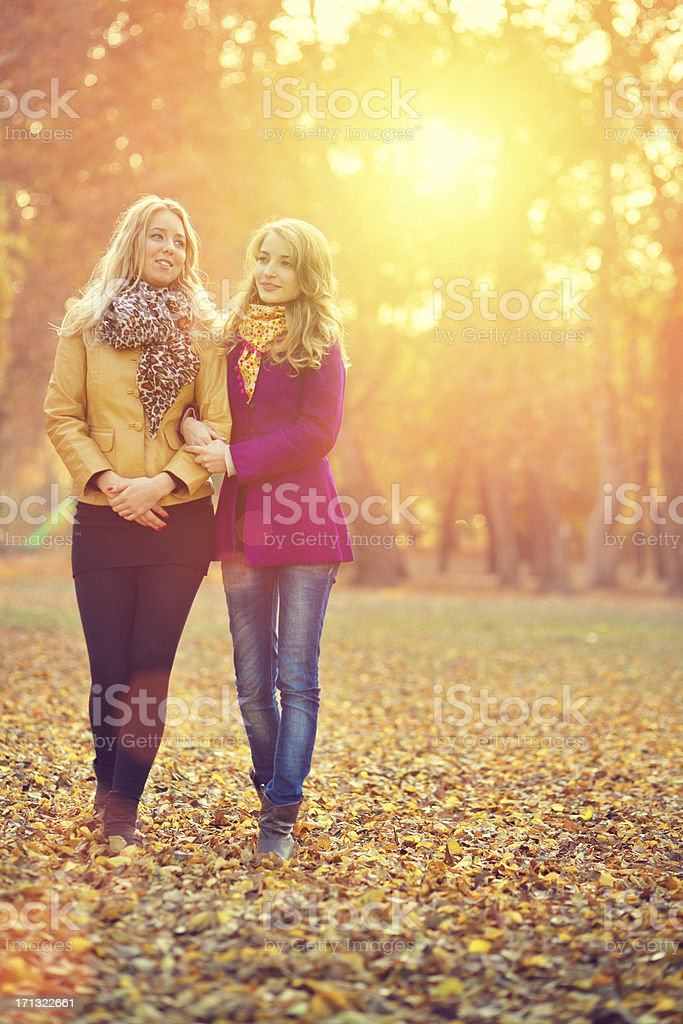 friends walking in the autumn park royalty-free stock photo