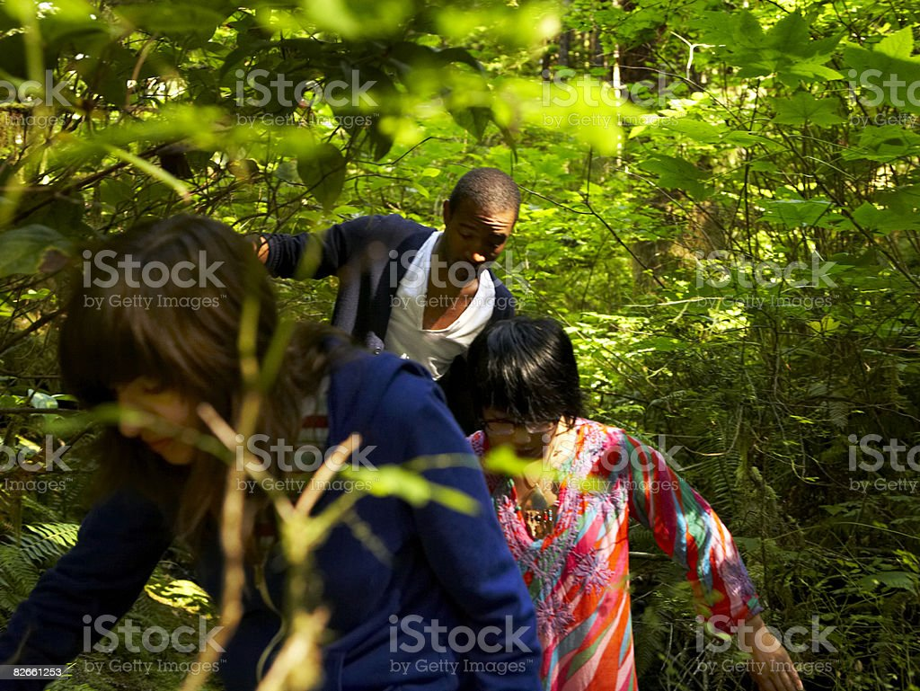 Friends walking through forest royalty-free stock photo