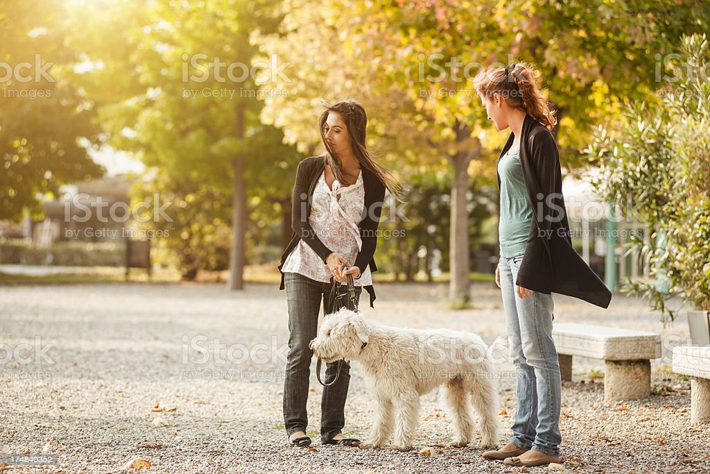 friends with dog in the park royalty-free stock photo